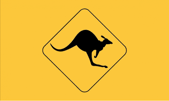 Design of the Kangaroo Road Sign 1500x900mm Flag